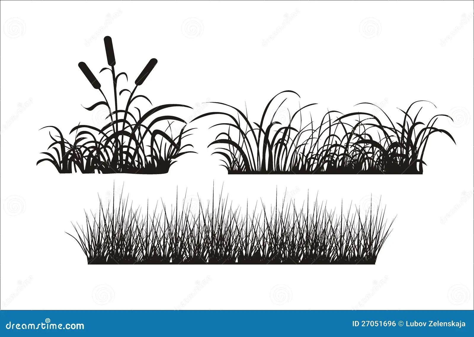 Silhouette Of Grass Stock Vector Illustration Of Shrub
