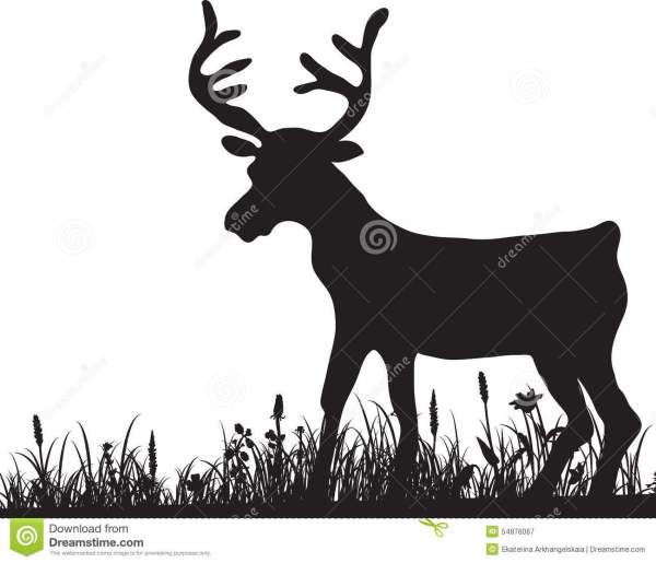 Silhouette Of Grass And Deer Stock Vector - 54876067