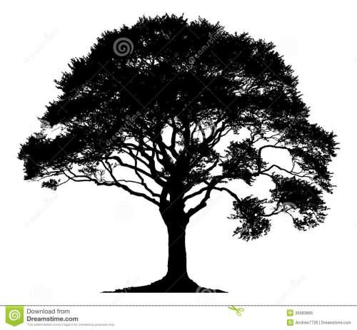 small resolution of silhouette of a lone tree stock illustration illustration fall tree clip art snowy pine tree clip