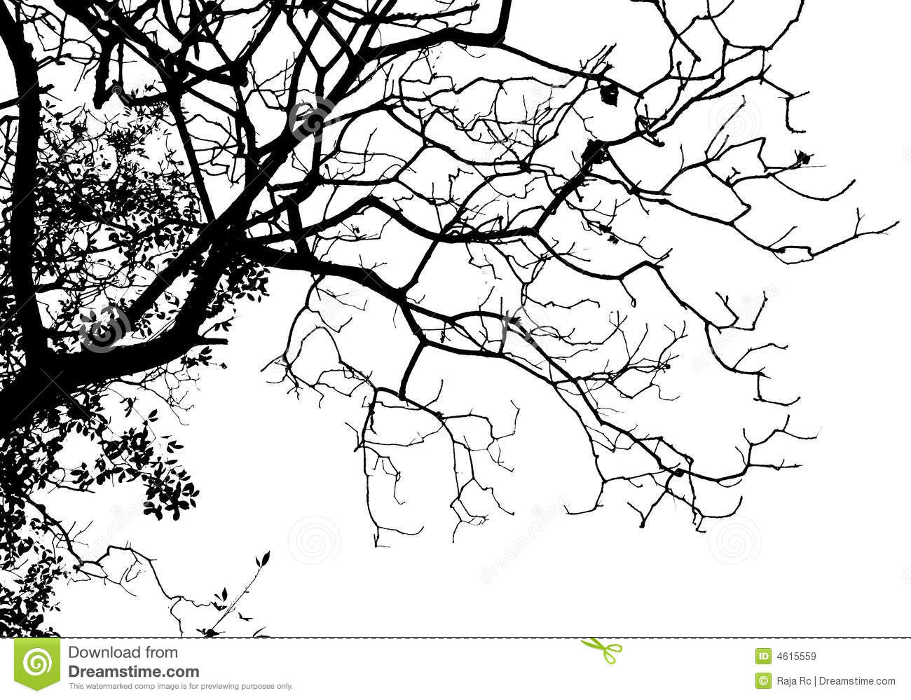 Silhouette Tree Royalty Free Stock Images