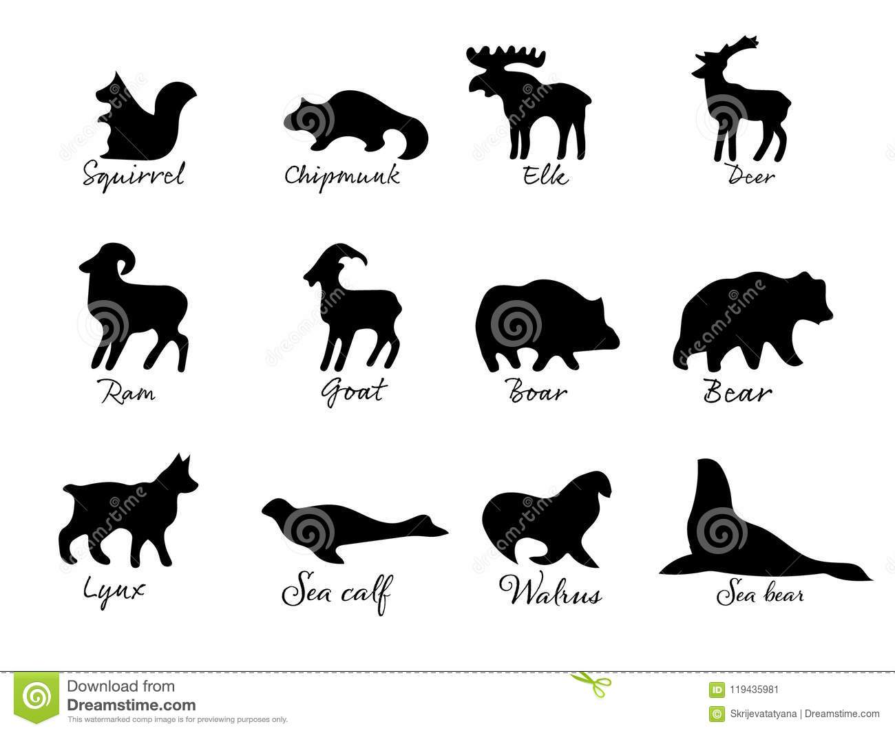 simple drawing various animals