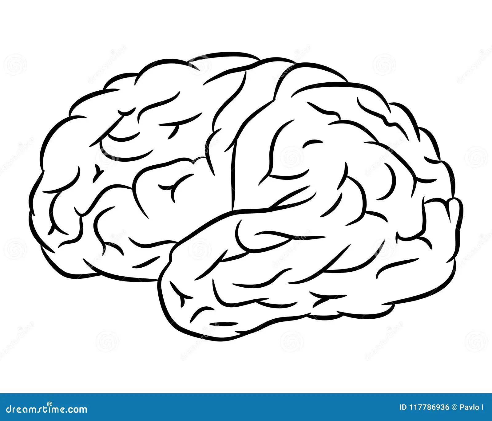 Simple Human Brain