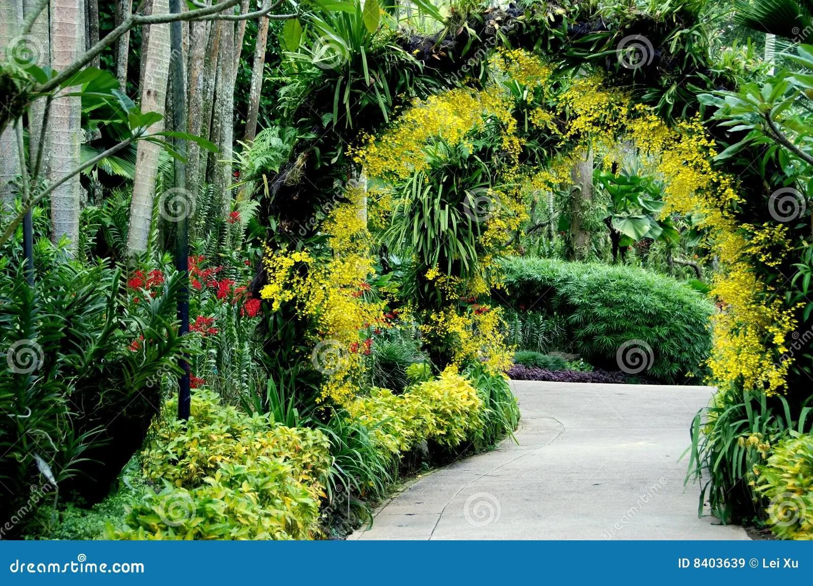 Singapore Giardino Nazionale Dellorchidea Immagine Stock