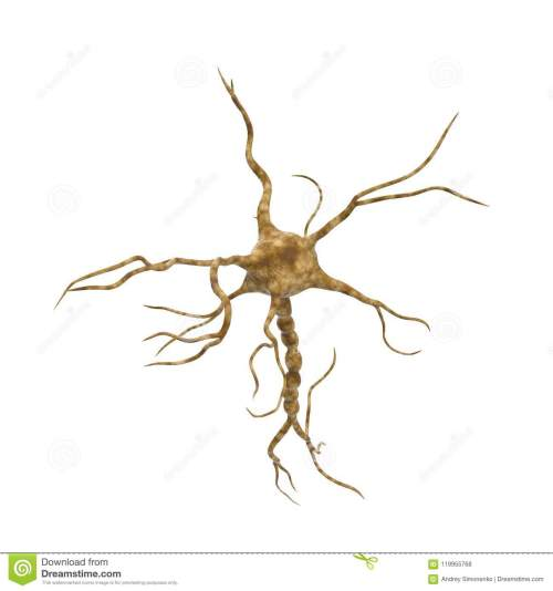 small resolution of single neuron nervous system on white background 3d illustration