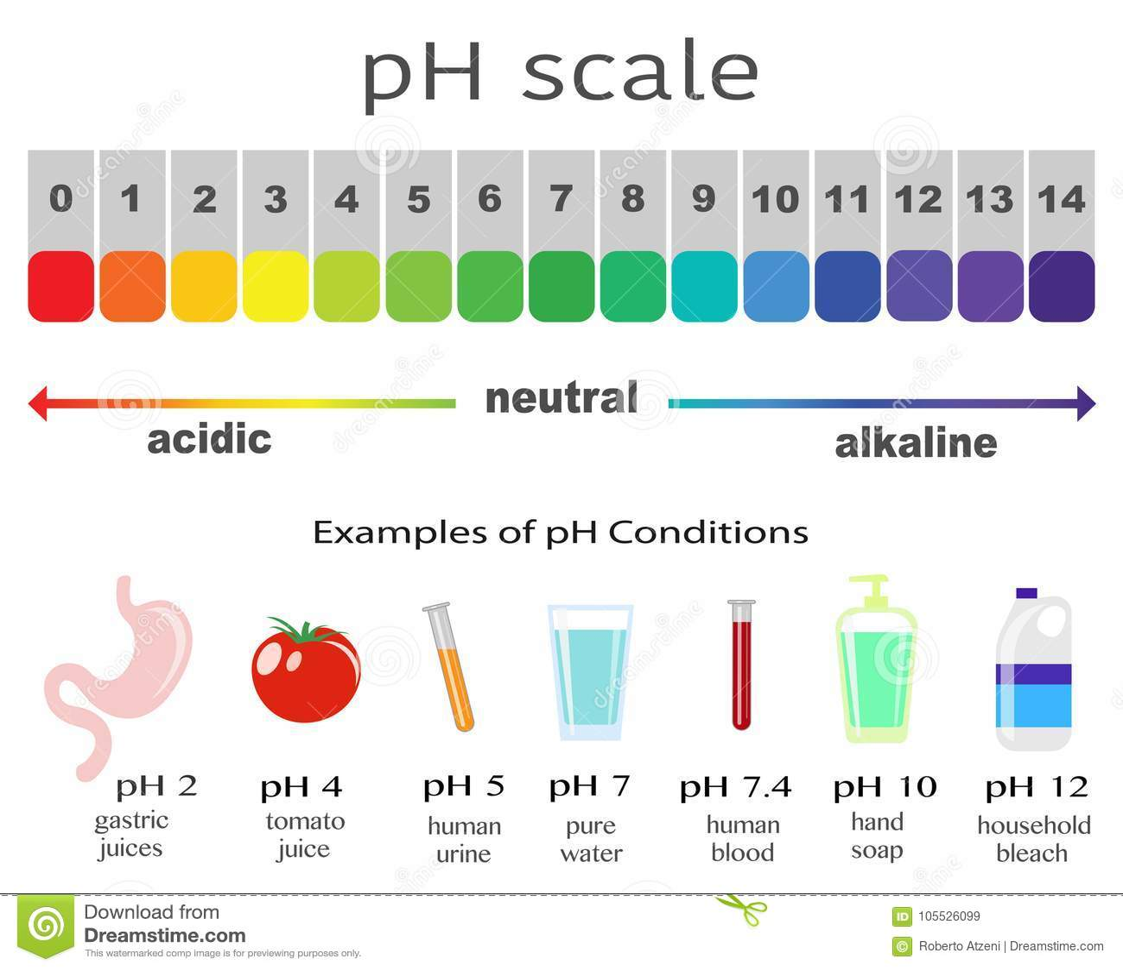 Skala Des Ph Fur Sauren Und Alkalischen Losungen