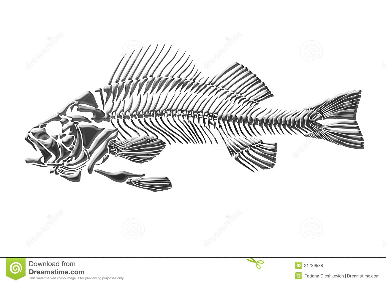 Skeleton Fish Stock Illustration Illustration Of Design