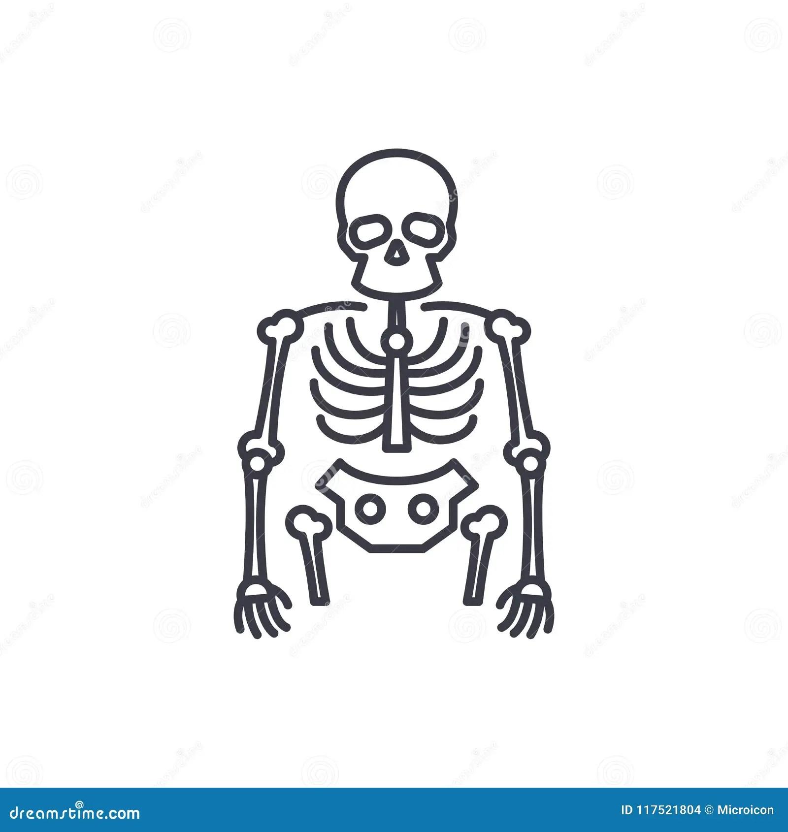 Bones Of The Foot Labeled Cartoon Vector