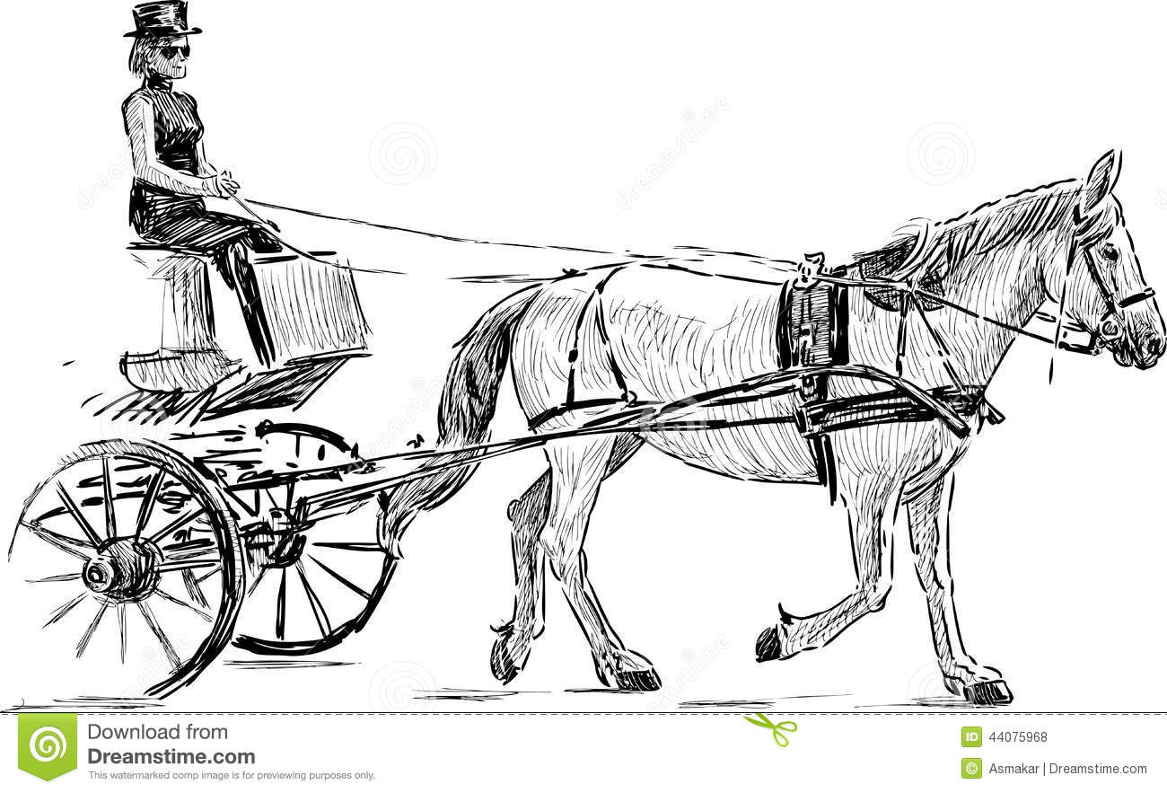 Sketch Of A Harnessed Horse Stock Vector