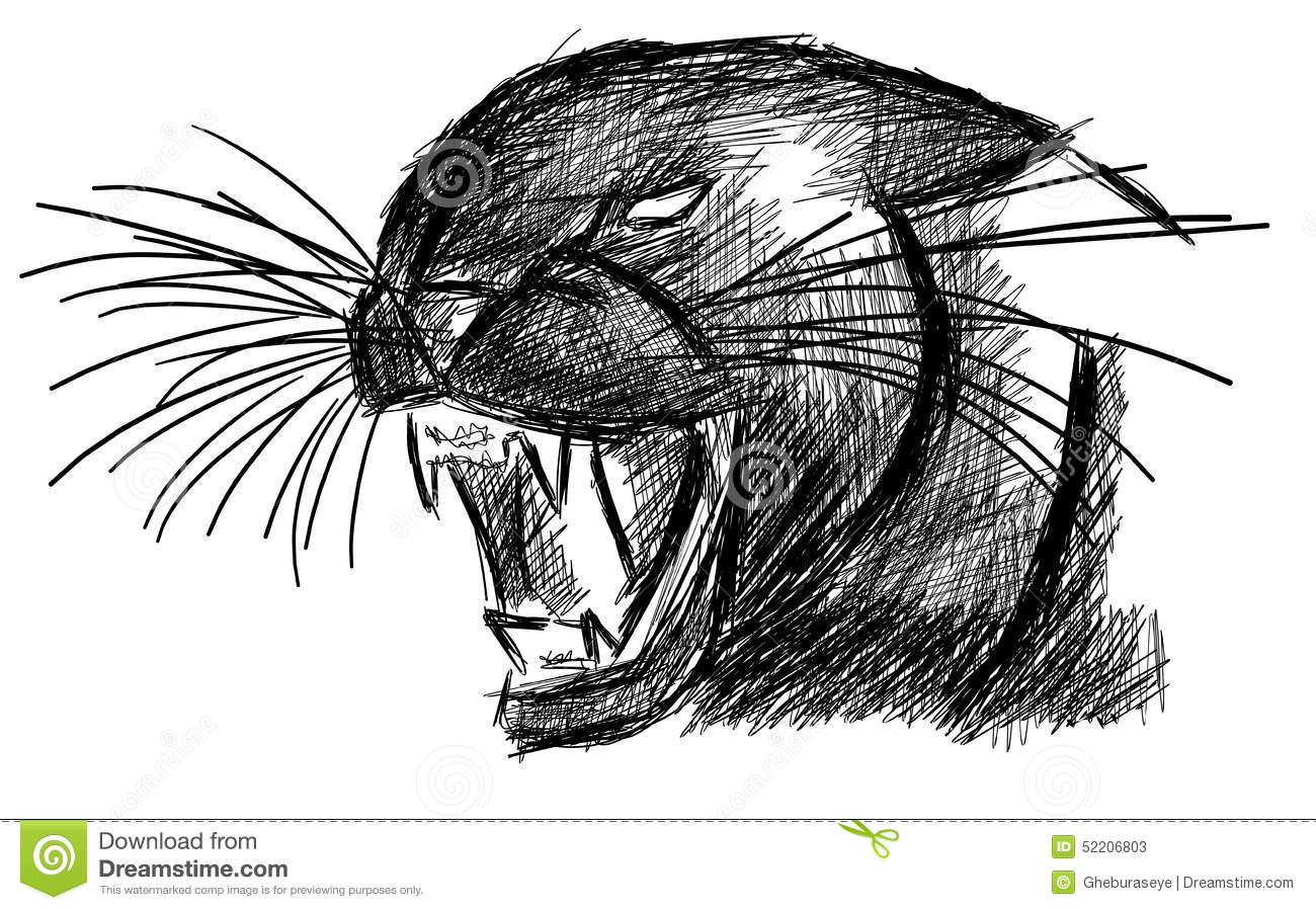 Sketch Of A Panther In Black Isolated Stock Vector