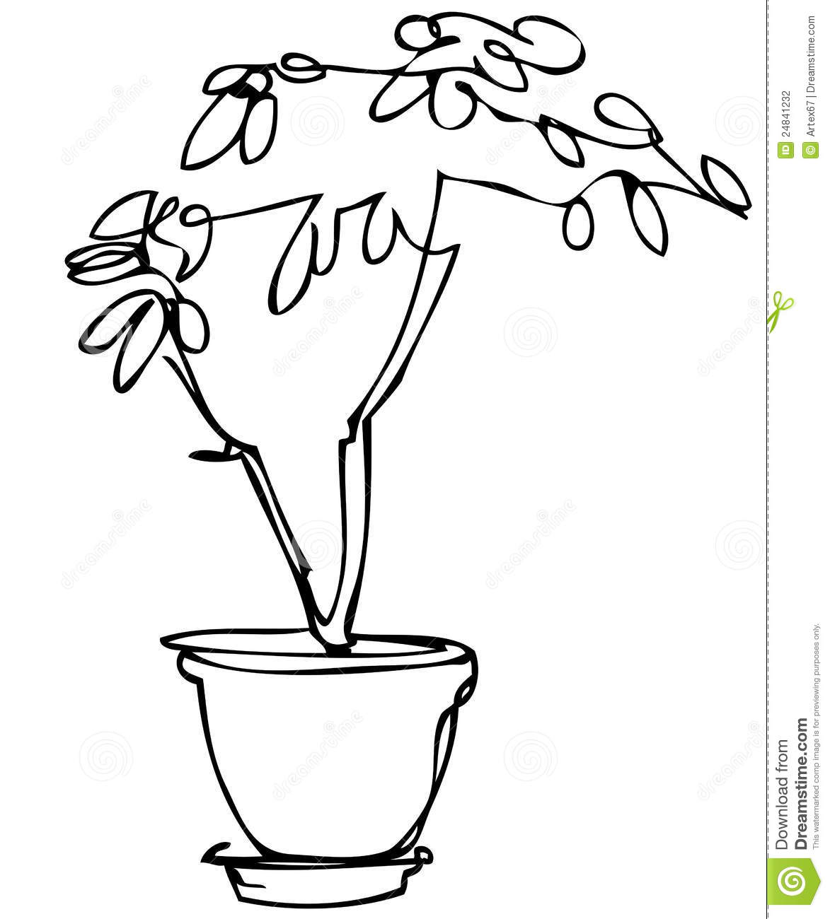 Sketch Room Plant Flower In A Pot Stock Photography