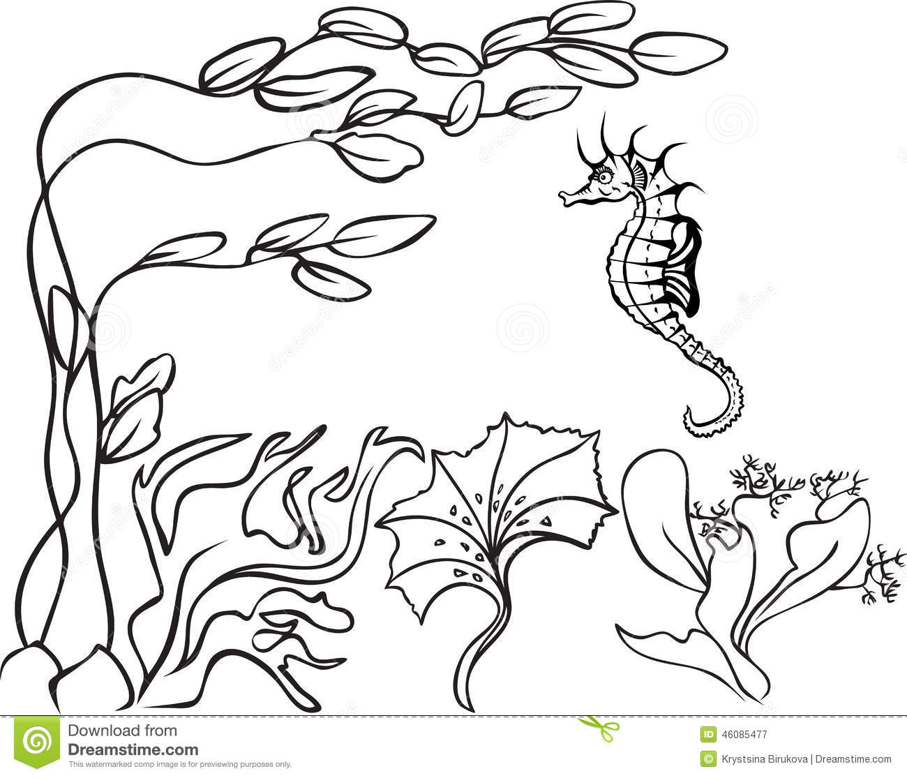 Sketch Underwater Stock Vector Illustration Of Life