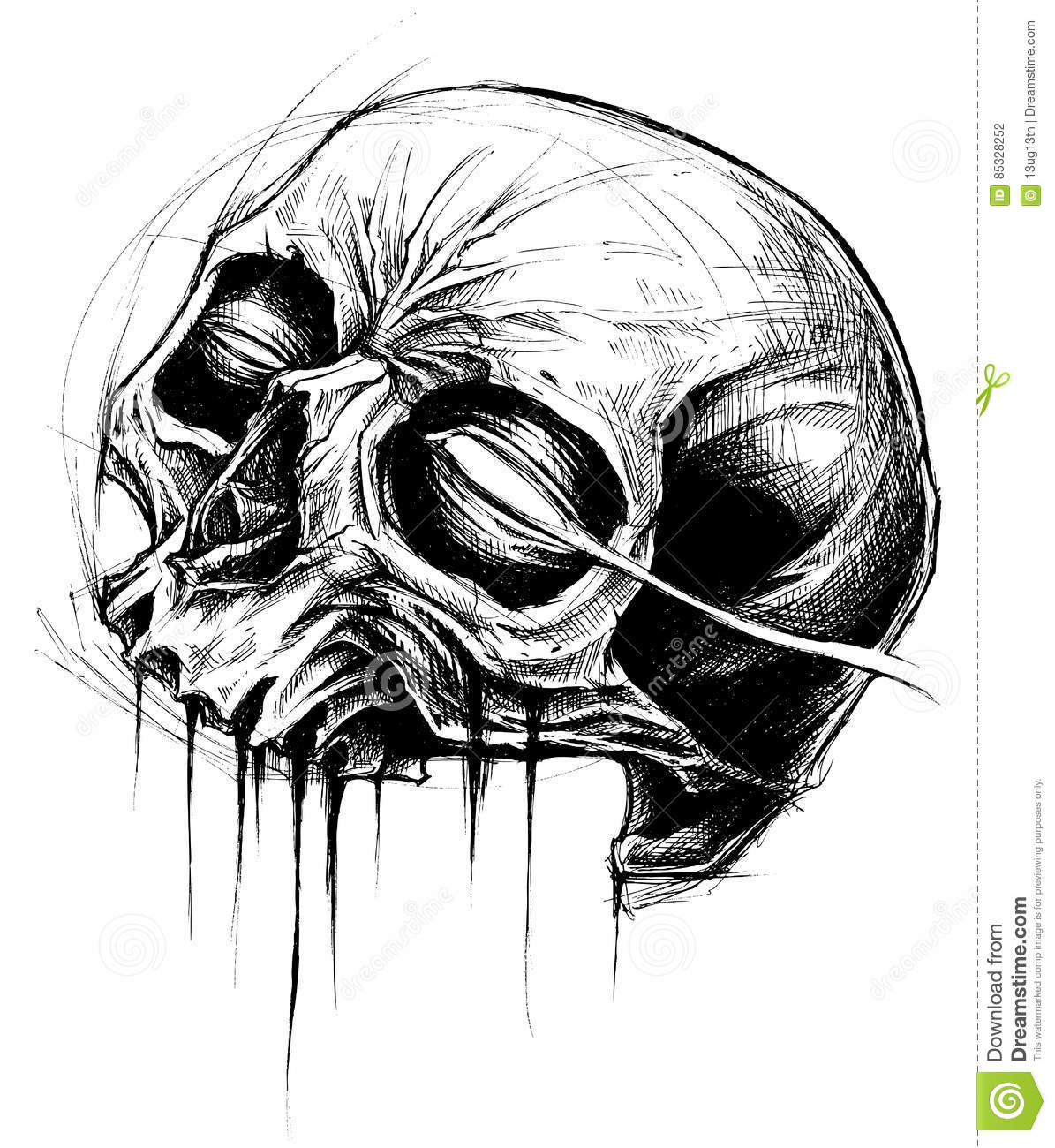 Skull Drawing Line Work Vector Stock Vector