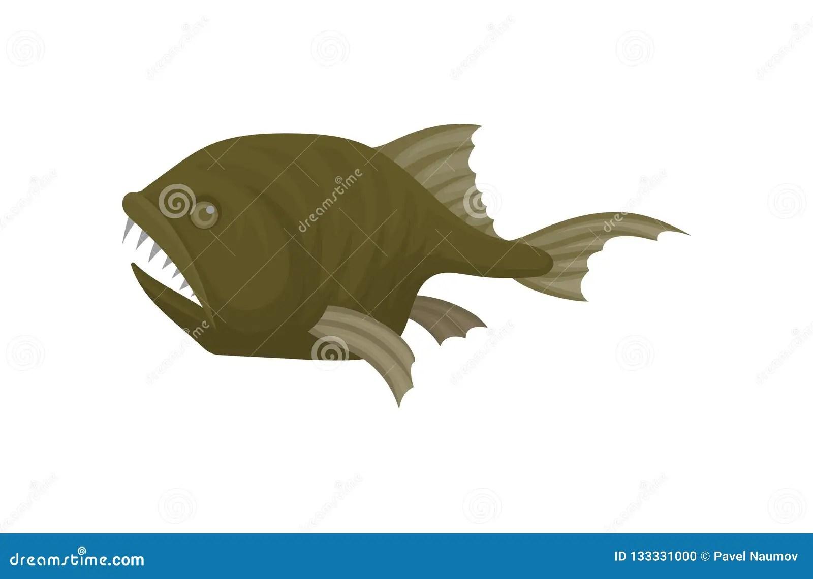 Monkfish Cartoons Illustrations Amp Vector Stock Images