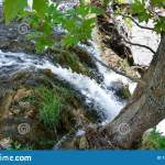 Small Waterfall Shot From Above Near A Tree Roots Stock Photo Image Of Shot Edge 154032116