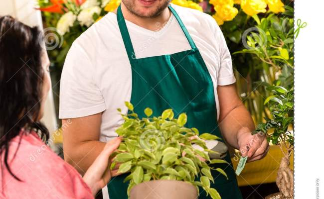 Smiling Male Florist Selling Potted Plant Flower Stock