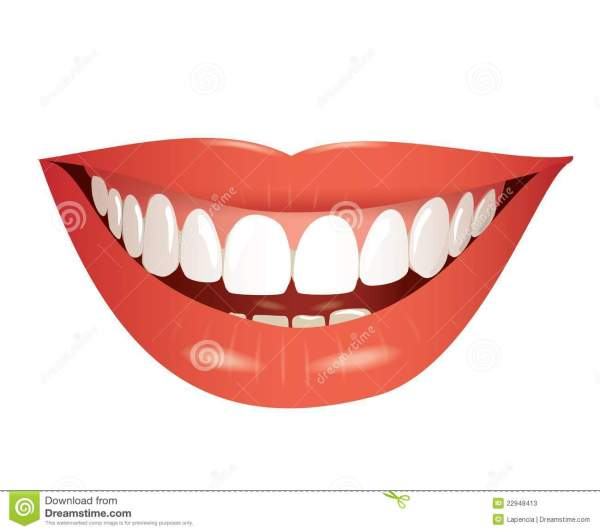 Smiling Mouth Isolated Illustration Stock Vector