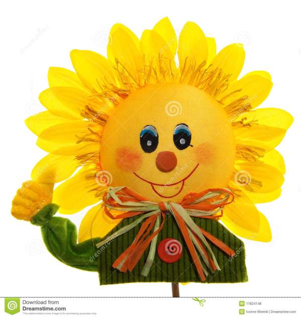 smiling sunflower royalty free
