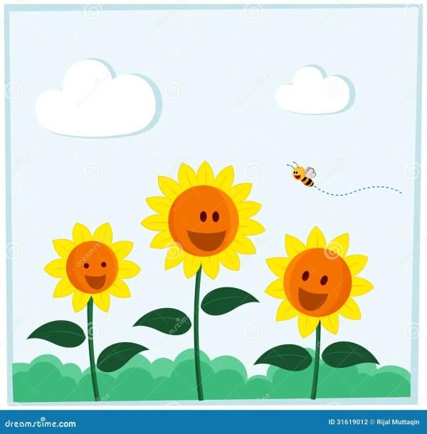 smiling sunflower stock