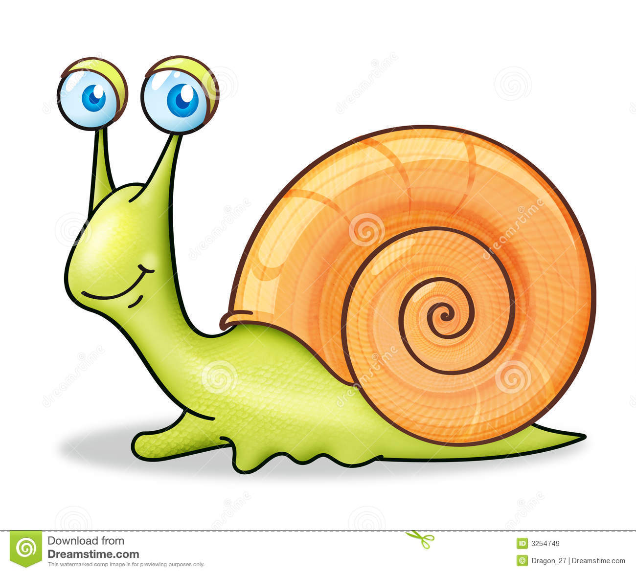 hight resolution of snail