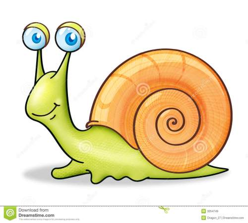 small resolution of snail