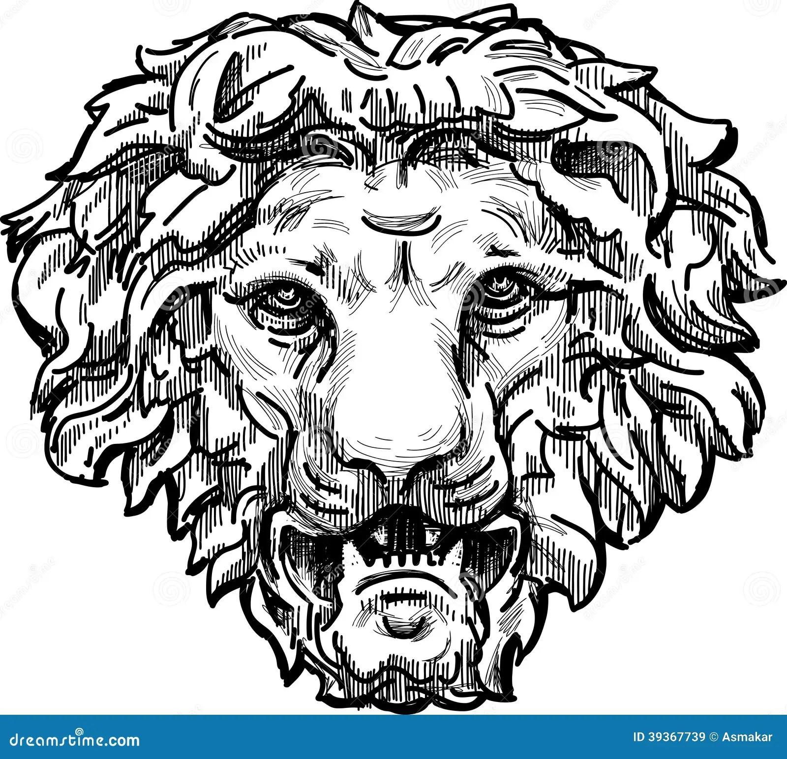 Snarling lion head stock vector. Illustration of sketch