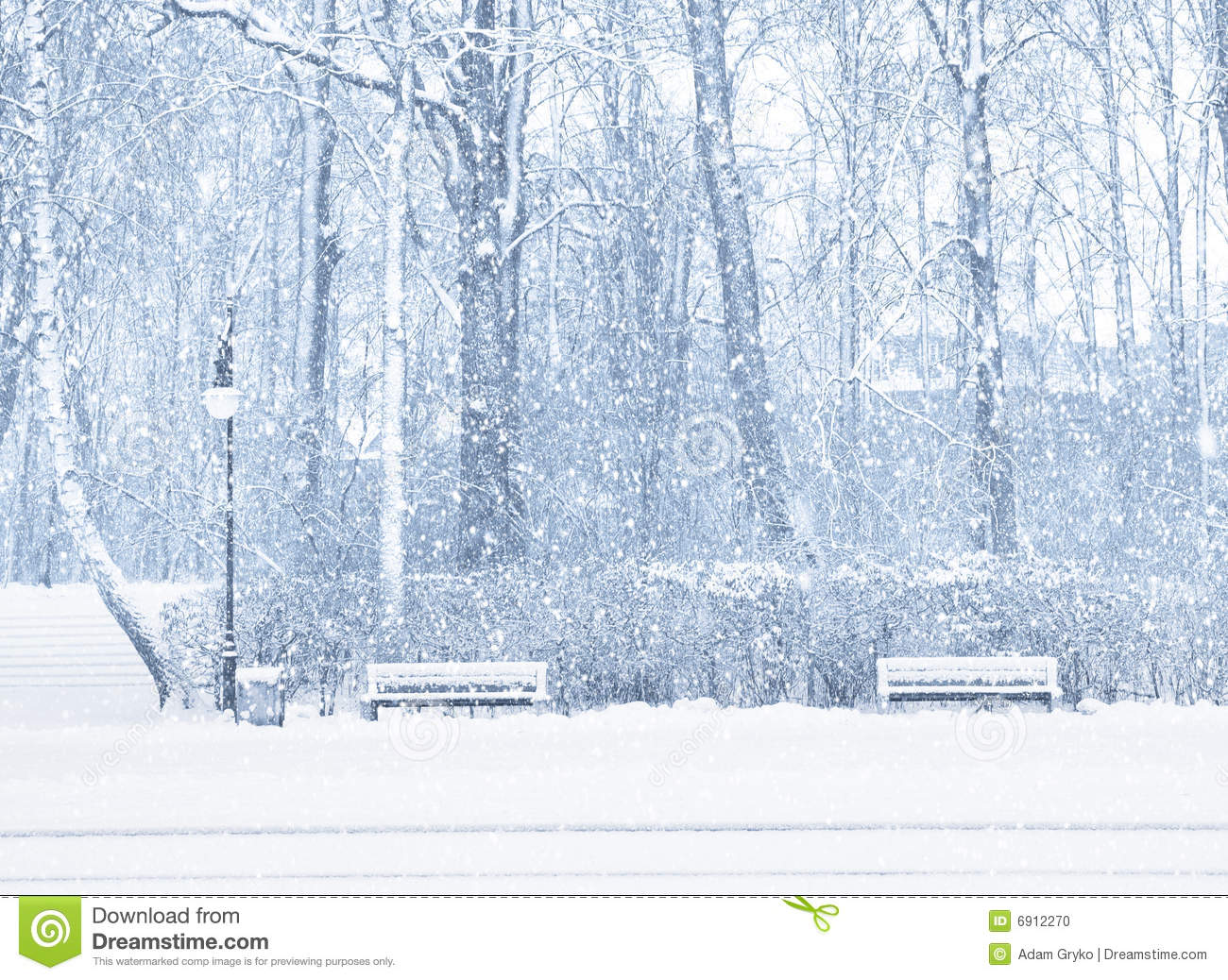 Snowing Stock Photo Image 6912270
