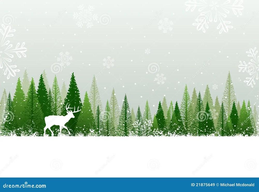medium resolution of snowy winter forest background