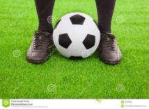 Field with Soccer Ball