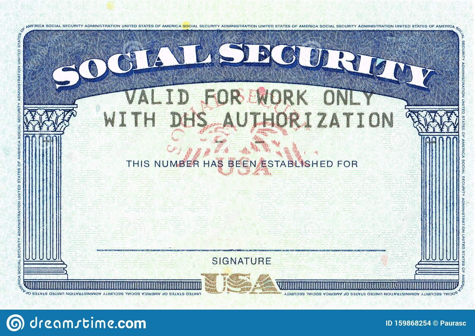 Social Security Card Blank Stock Photo Image Of Proxy