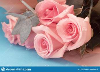 3 887 Pink Aesthetic Photos Free & Royalty Free Stock Photos from Dreamstime