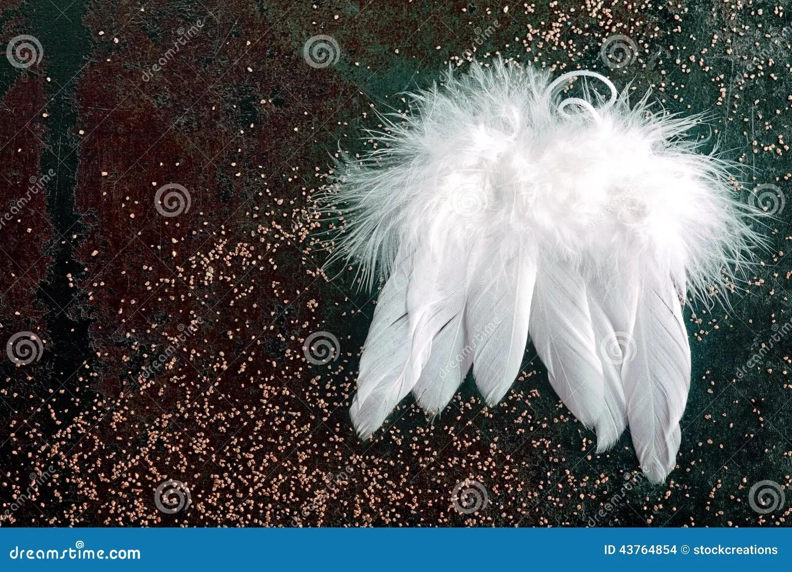Soft White Christmas Angel Wings Stock Photo Image 43764854