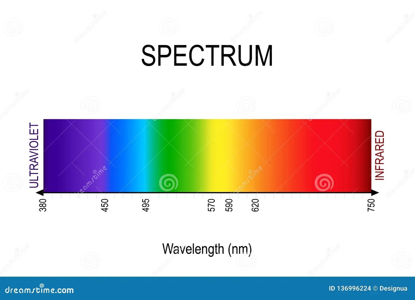 Spettro Luce Visibile Infrarosso Ed Ultravioletto