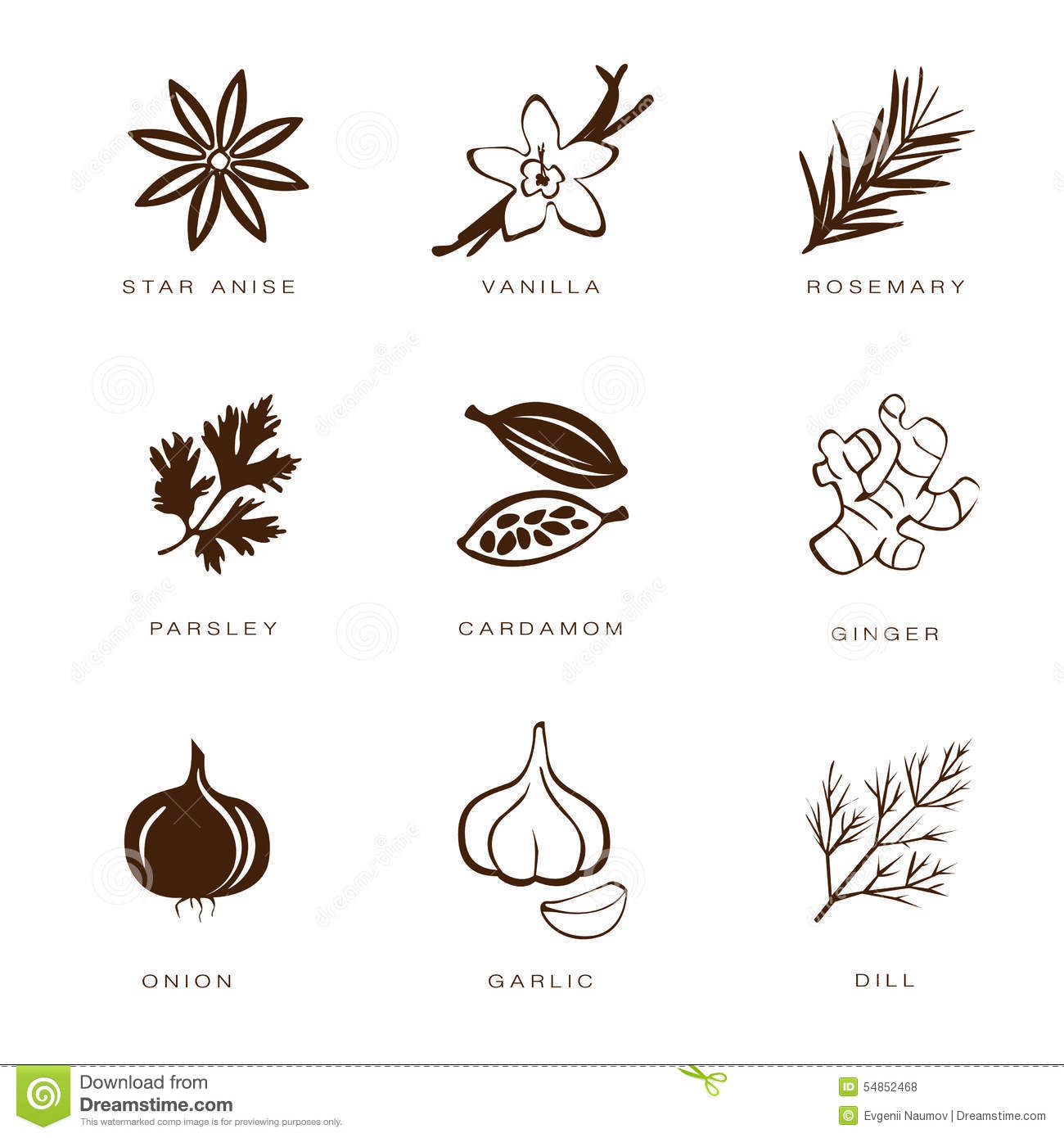 kitchen utensil set restaurant supplies spices, condiments and herbs vector stock - image ...
