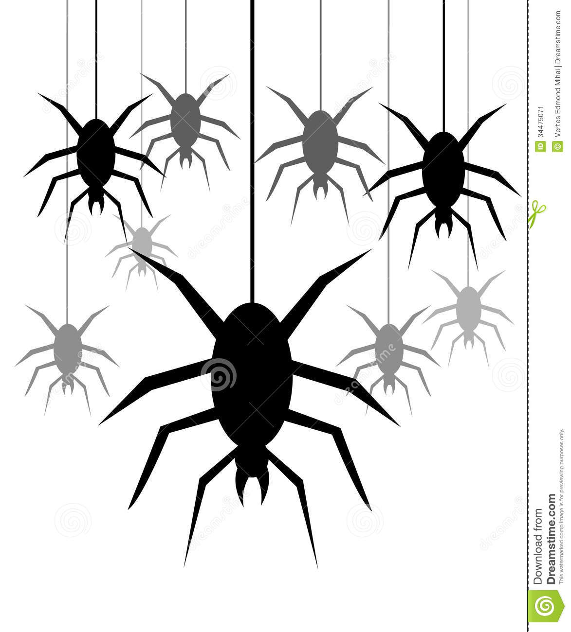 Spiders hanging on a web stock vector. Illustration of