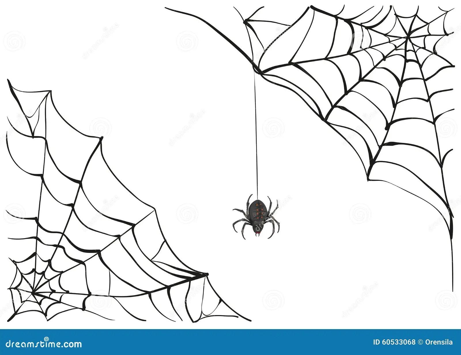 Spiderweb. Big Black Spider Web. Black Scary Spider Of Web