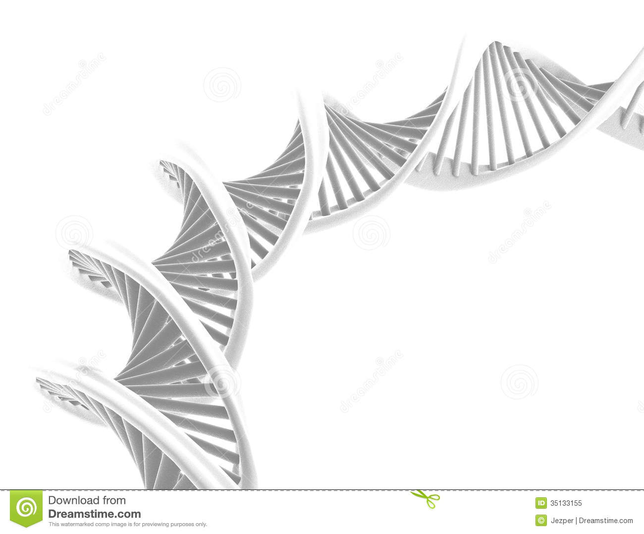 Real Dna Isolated