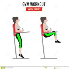 Captains Chair Exercise 2 Beige Leather Dining Chairs Sport Exercises Gym Workout Hanging Leg Raises Captain