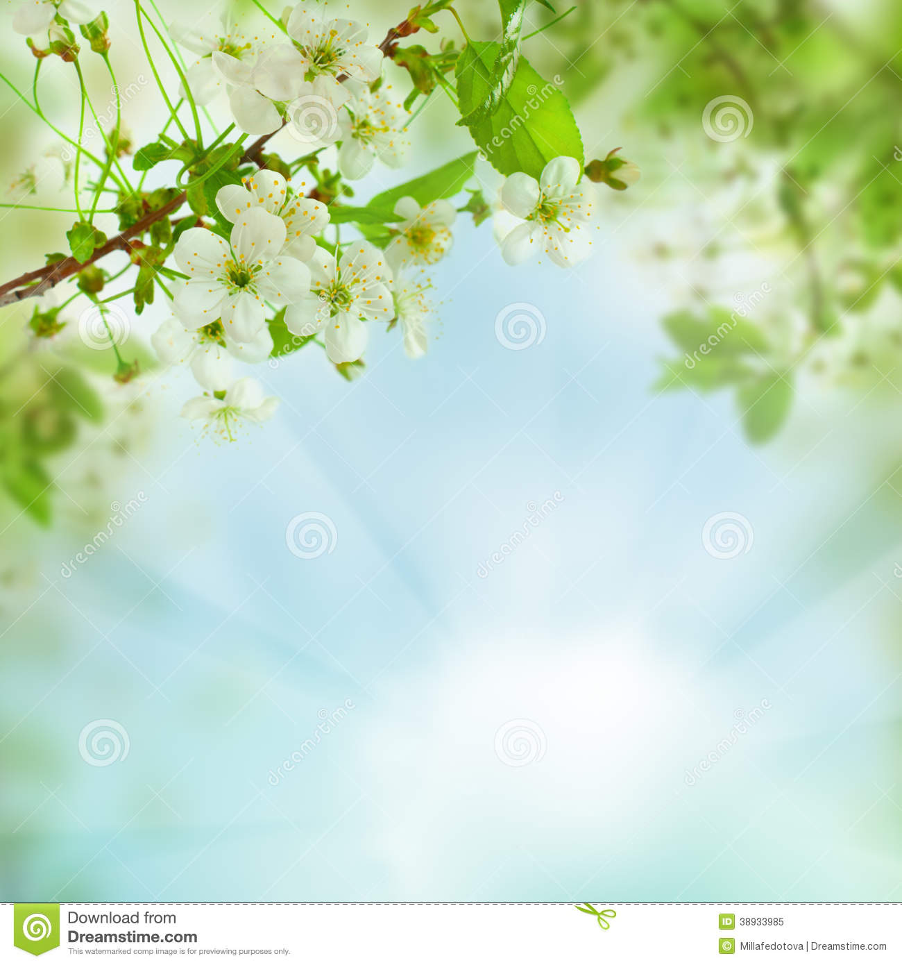 Spring Floral Background Abstract Nature Concept Stock