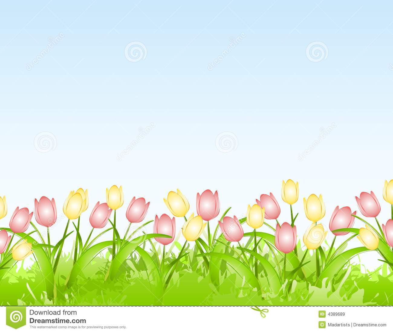 hight resolution of spring tulips flower border background