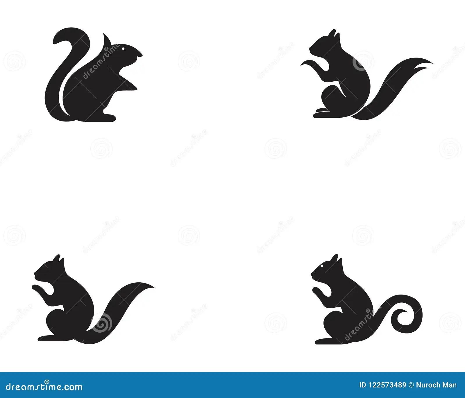 squirrel animals logo and