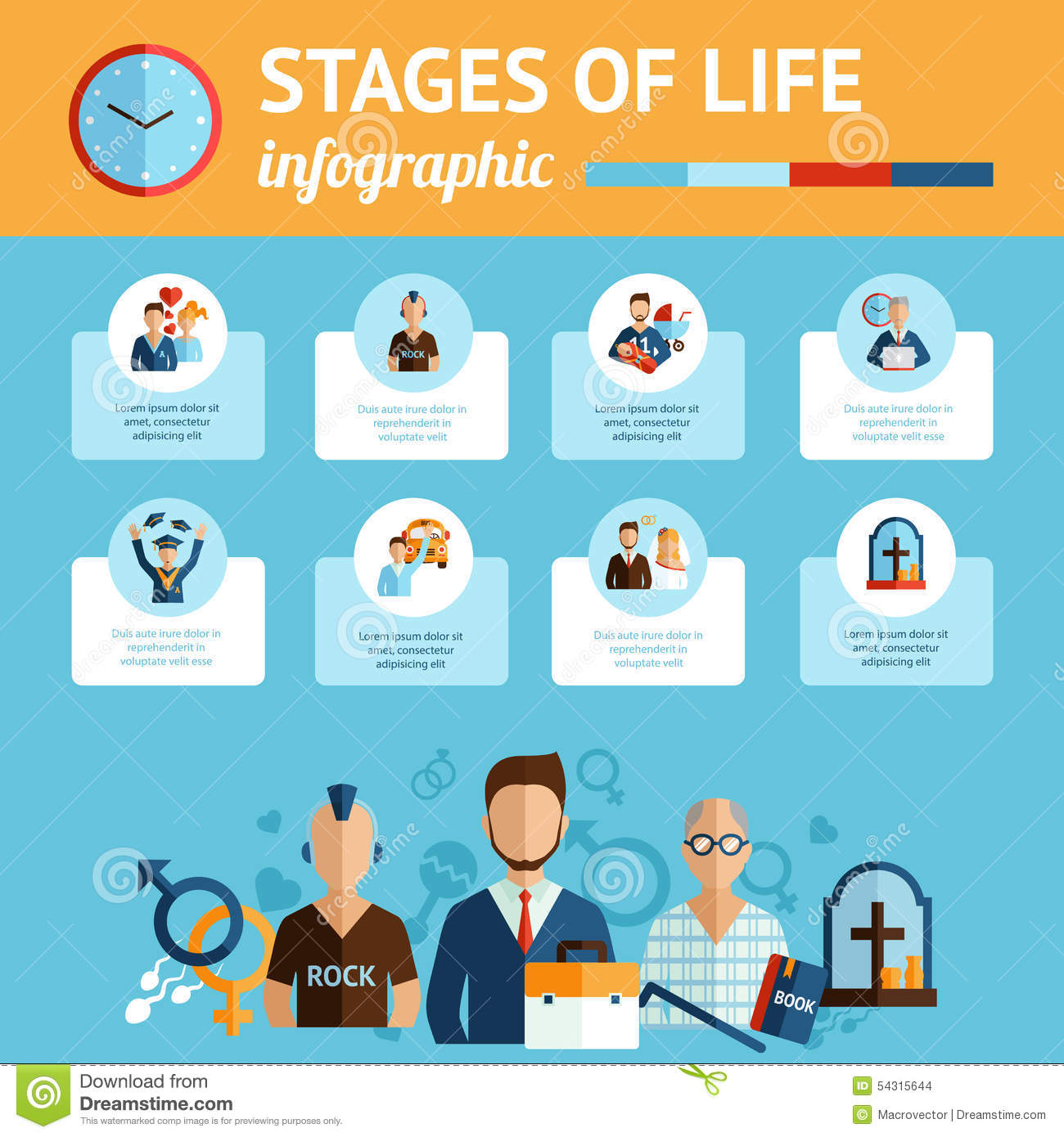 Stages Of Life Infographic Report Print Stock Vector