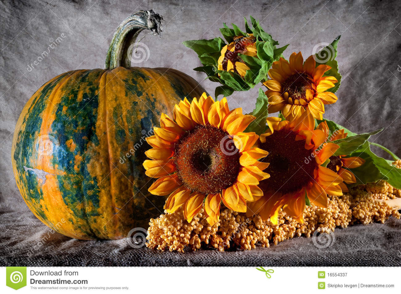Free Fall Harvest Wallpaper Still Life With Pumpkin And Sunflowers Royalty Free Stock