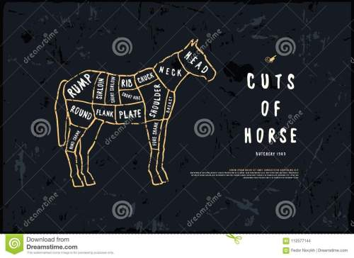 small resolution of stock vector horse cuts diagram in the style of handmade graphic