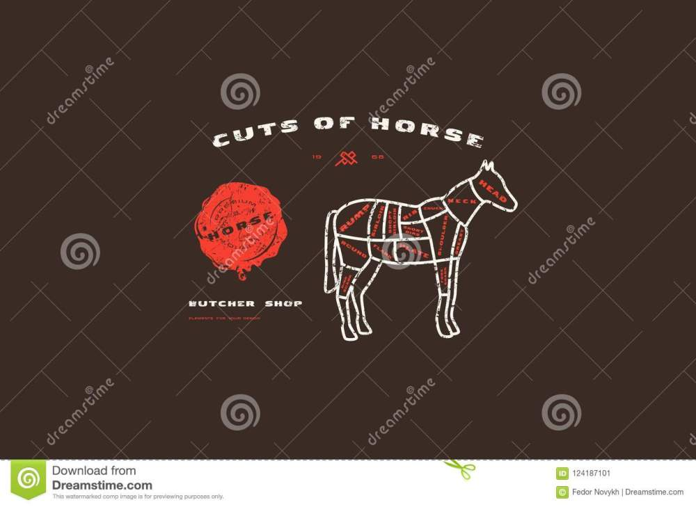 medium resolution of stock vector horse cuts diagram in thin line style