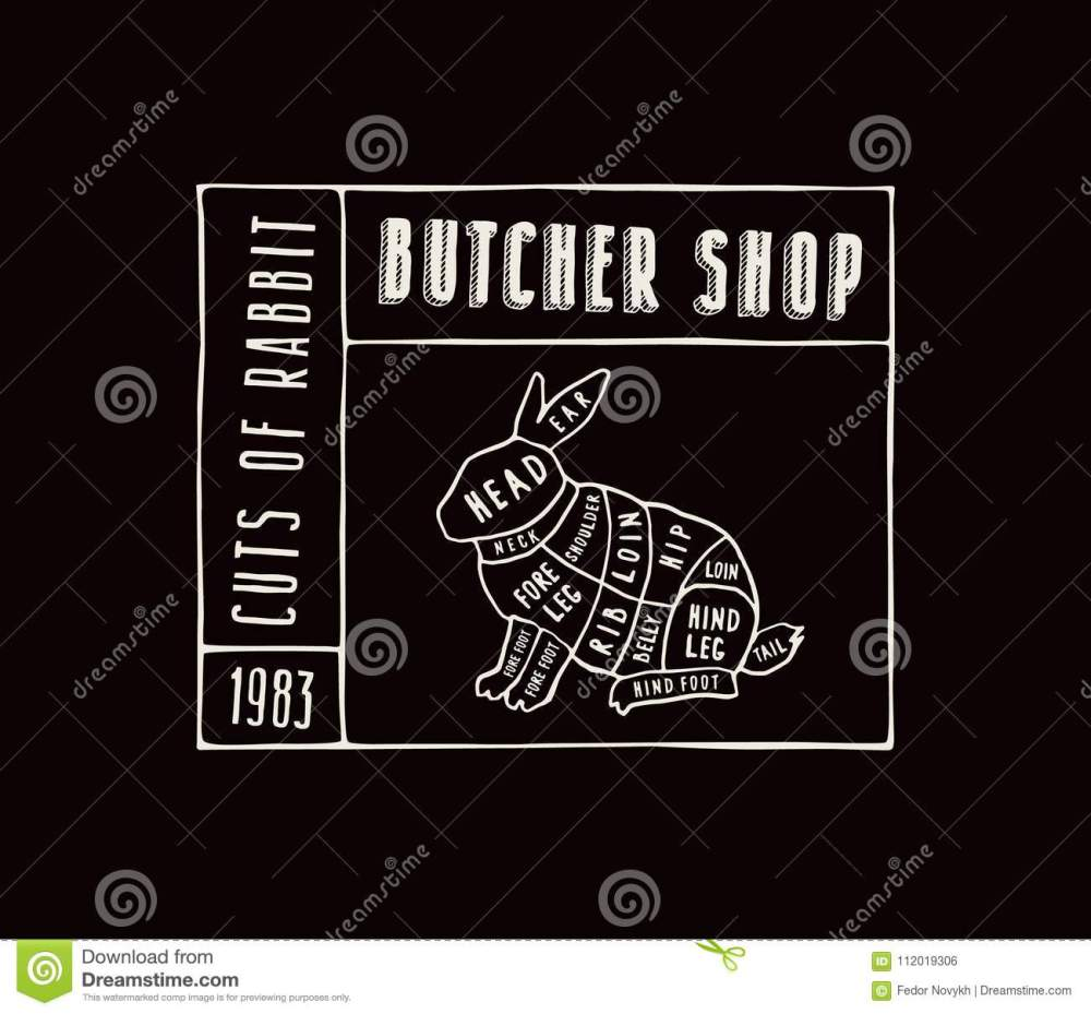 medium resolution of stock vector rabbit cuts diagram in the style of handmade graphi