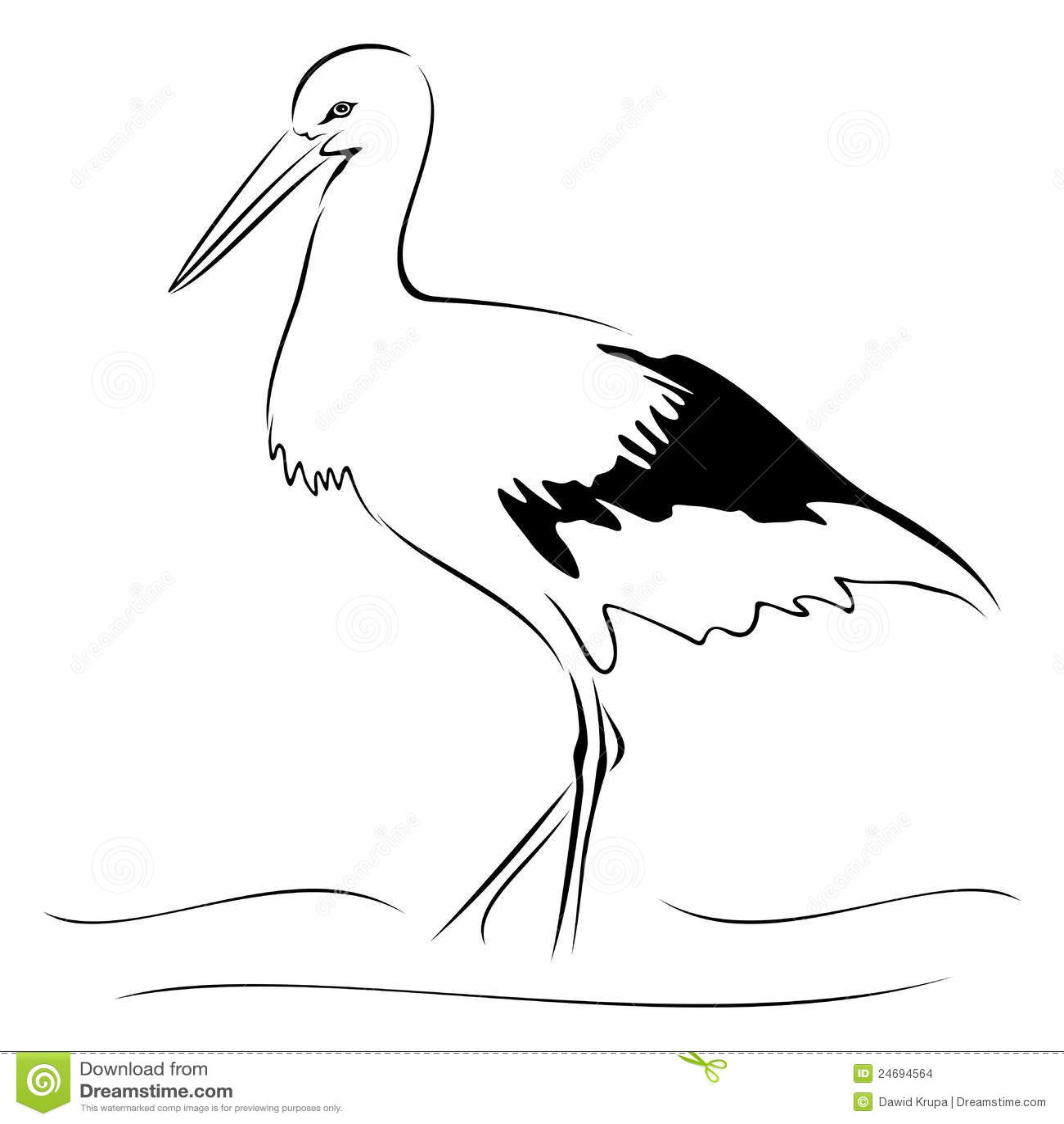 Storch Auf Skizze Vektor Abbildung Illustration Von