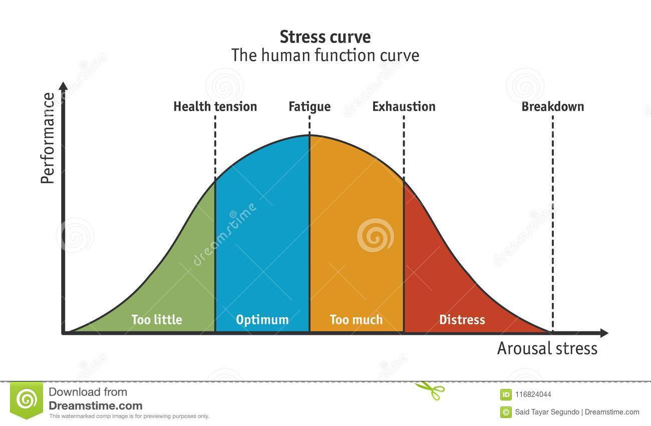 Diagram Of A Hospital Stress Performance Curve Royalty Free Illustration