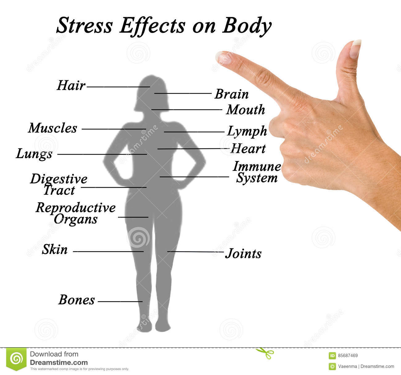 hight resolution of stress effects on body stock image image of hand female 85687469 effects of stress on the body a diagram