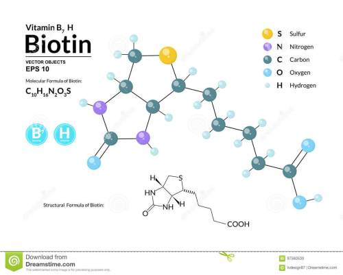 small resolution of structural chemical molecular formula and model of biotin atoms are represented as spheres with color
