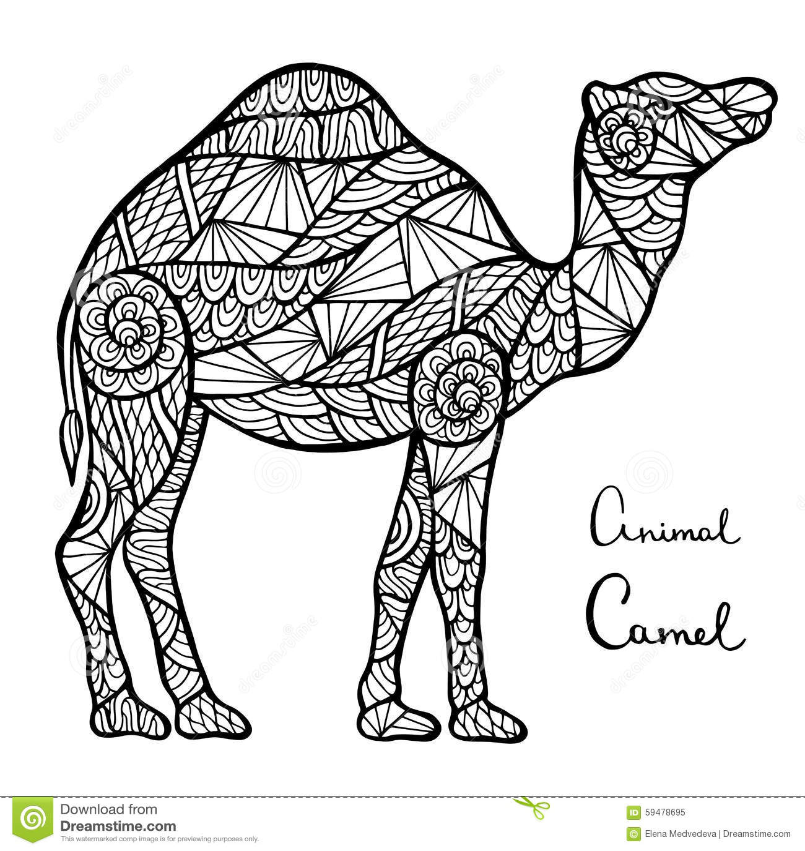 Stylized Vector Camel Zentangle Isolated On White
